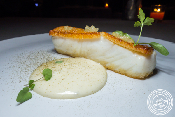 Halibut at L'Appart in NYC