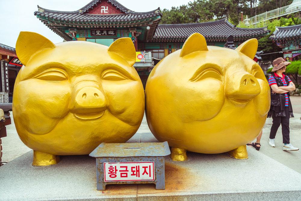 Korea-18.jpg