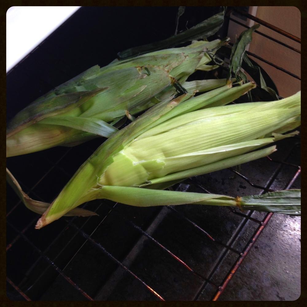 Seasoned corn in the husk