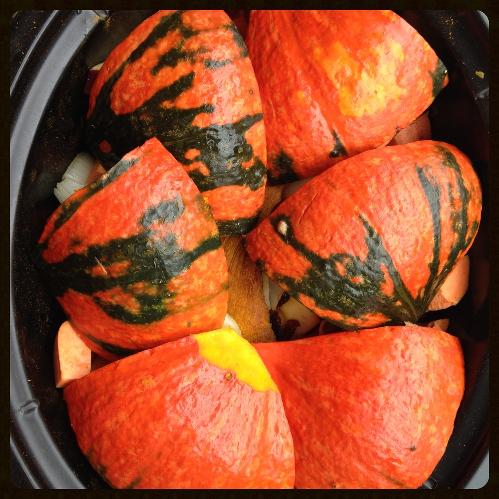 Red Kuri squash covered pork
