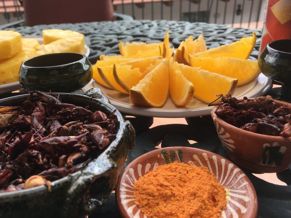 Mezcal snacks, served along the traditional sal de gusano, which is ground maguay worms mixed with chile and salt.
