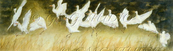 Egret Heaven