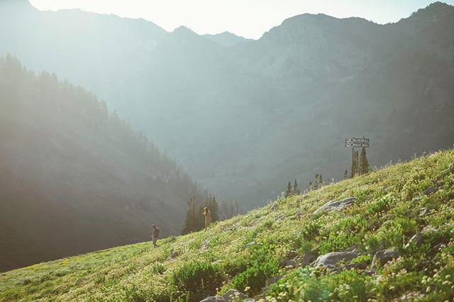 The hills are alive. . . . #utah #utahisrad #utahphotography #nature #naturephotography #sony #Wandrd #sonyalpha #moodygrams #alphacollective #rei1440project #optoutside #watchthisinstagood #wanderfolk #socality #lifeofadventure #liveauthentic #moodygrams#ourplanetdaily #vscocam #vscogrid #livefolk