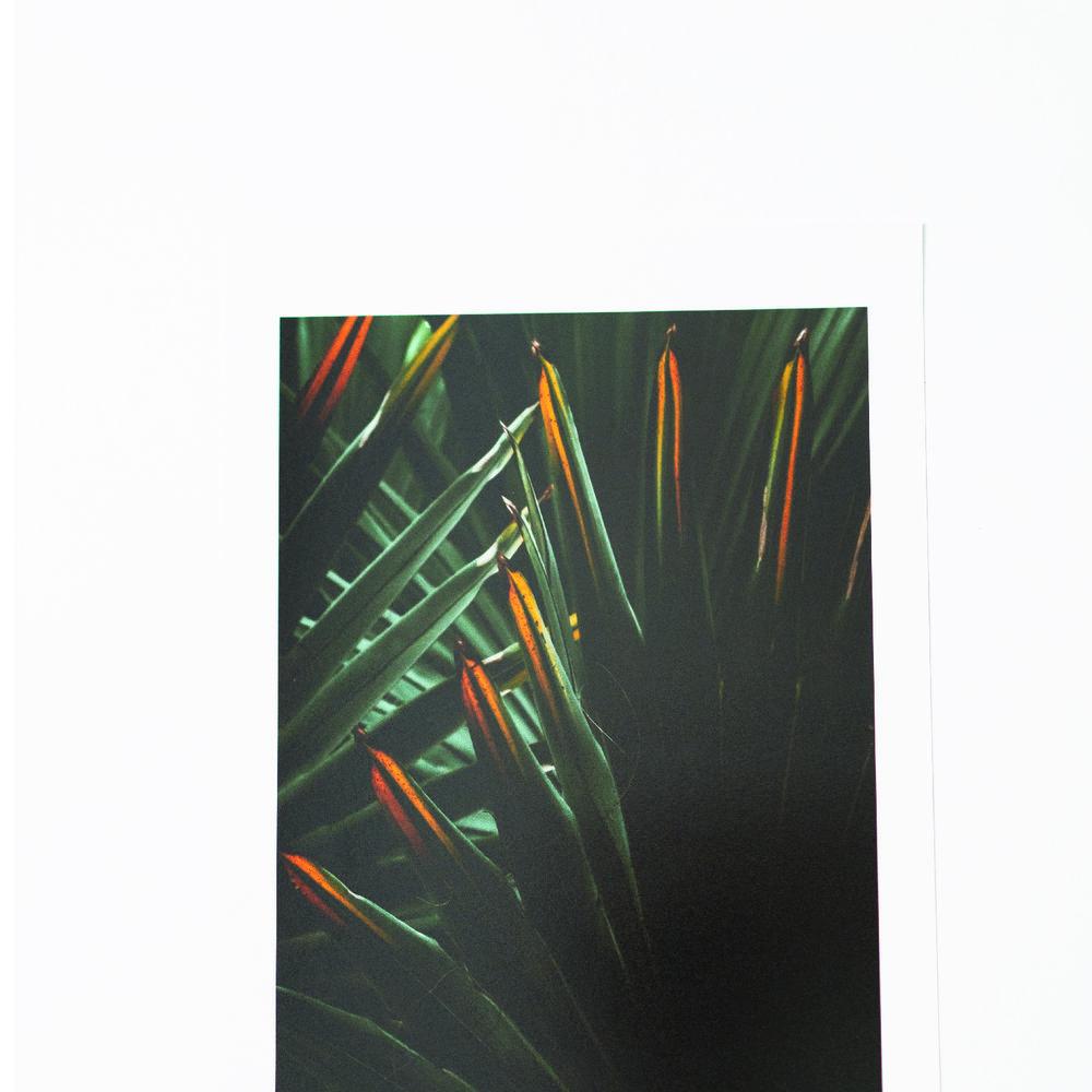 s6Artboard 5-100.jpg