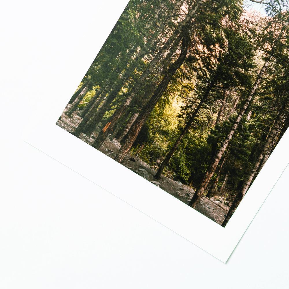 s6Artboard 9-100.jpg