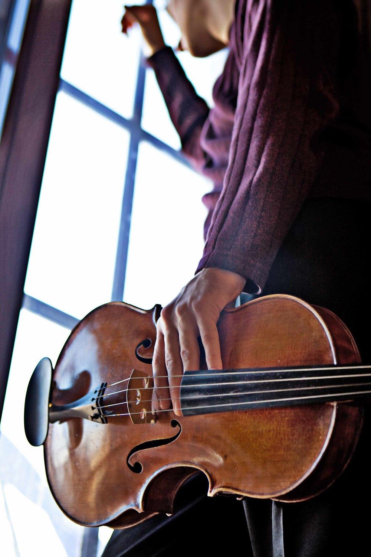 Viola Hold.jpg
