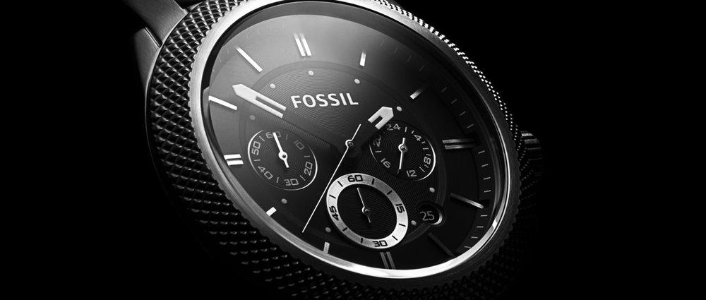RyanJSpeers_Fossil_01
