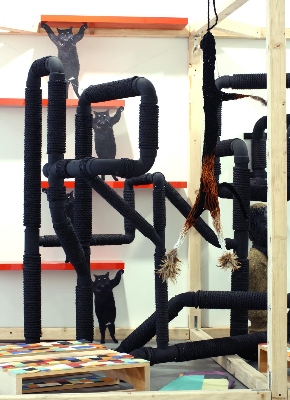 cat-show-03.jpg