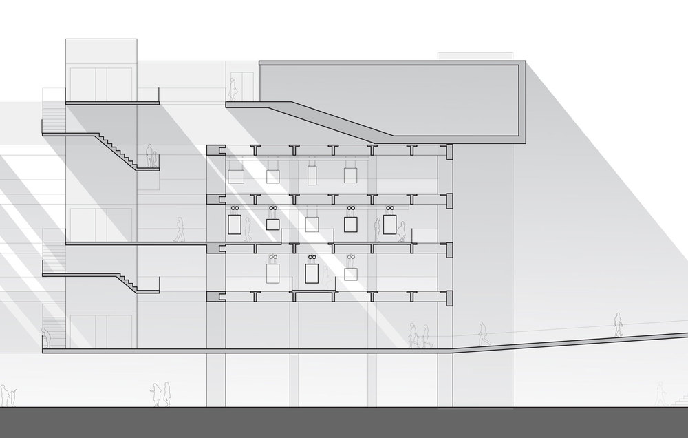 Section---Building_WEB.jpg