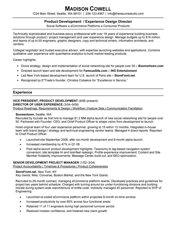 Product Development VP  Development Director Resume