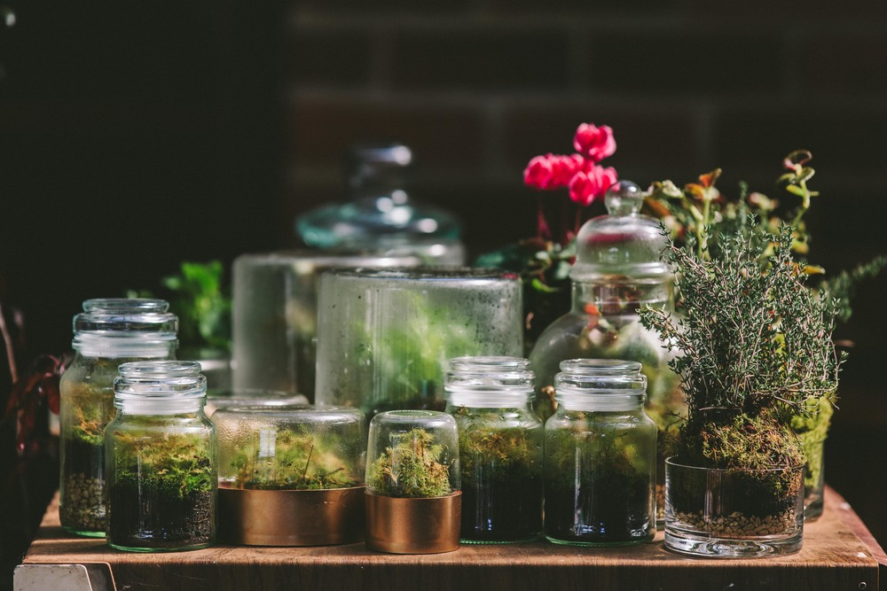 Terrariums by Primula Floral Styling, photo by  Shantanu Starick .