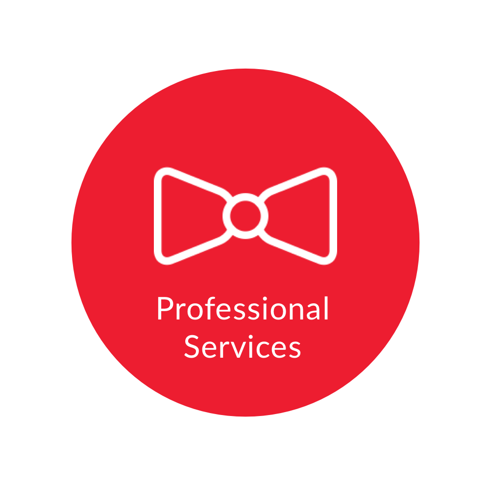 professional-services.png