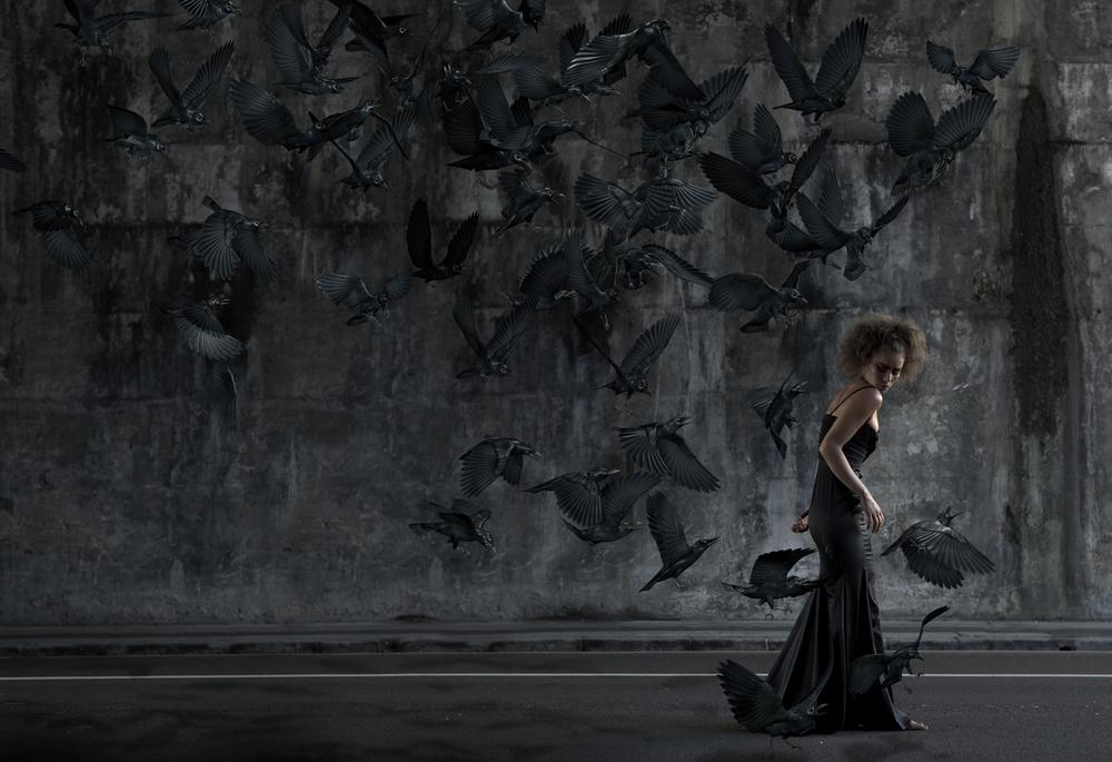 crows_sm.jpg
