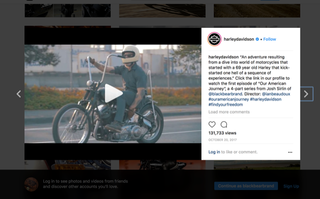 Black bear Brand and Harley-Davidson media