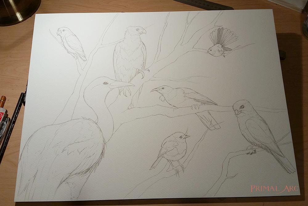 birds-blog-1.jpg