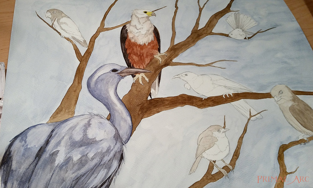 birds-blog-3.jpg