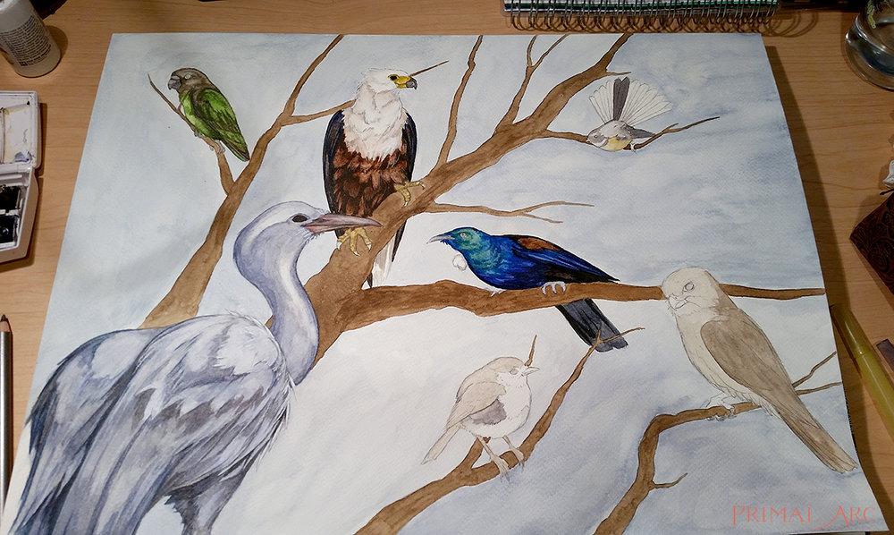 birds-blog-4.jpg