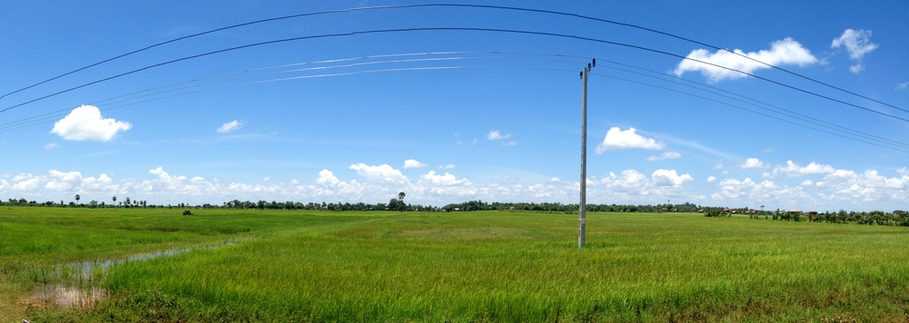 Cambodian rice fields, 2014