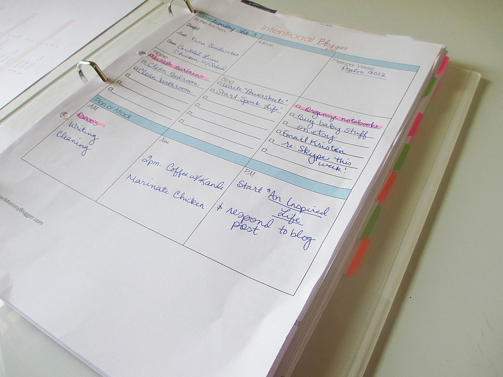 This daily planning sheet isn't from Powersheets {it's from The Intentional Blogger, which unfortunately doesn't seem to exist on the internet now}, but I had to show a photo of the new 3-ring binder my mom sent me.    You can't buy those here   . And I can't tell you how thrilled I was to get one {actually 2!} in a package this weekend!