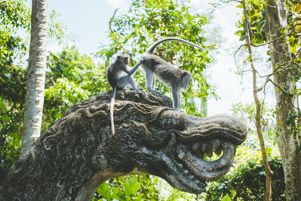 Bali-MARIANNA JAMADI-5.jpg
