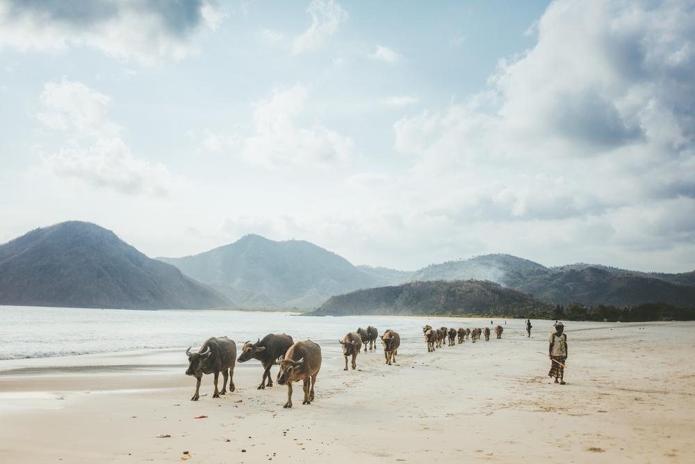 Lombok-MARIANNA JAMADI-12.jpg