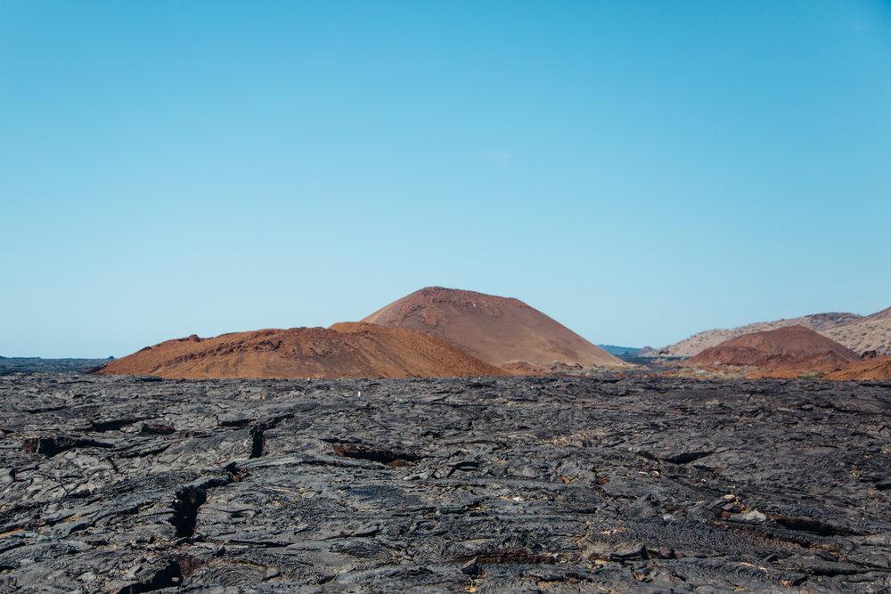 Galapagos-13.jpg