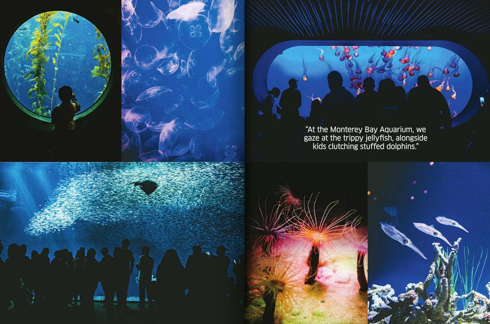 Hemispheres 4.png