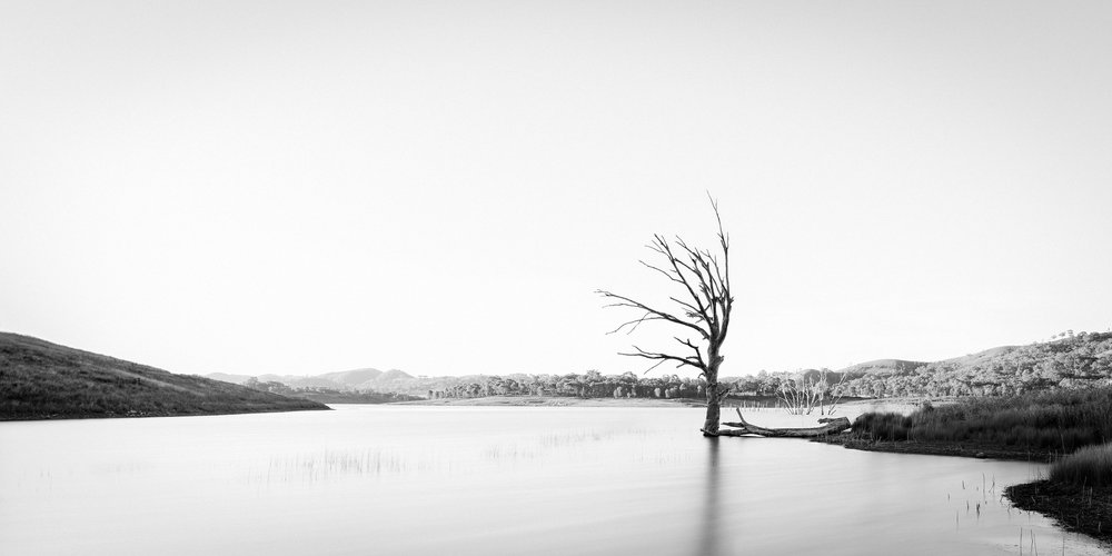 HELEN TRENERRY Photographer - Landscape - Lone Tree
