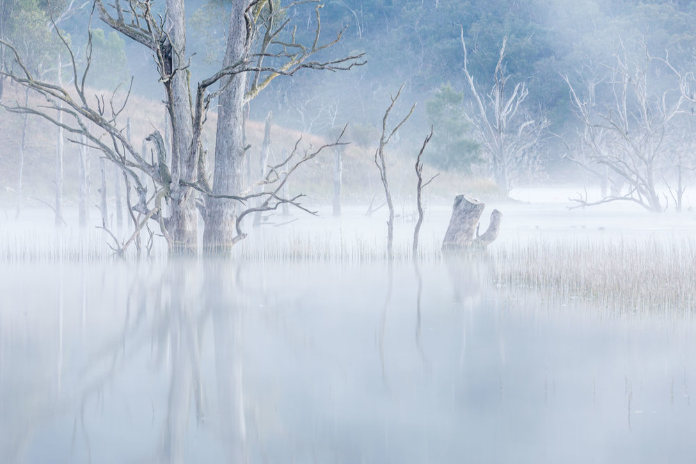 HELEN TRENERRY - Landscape - Lake Windamere - Serenity