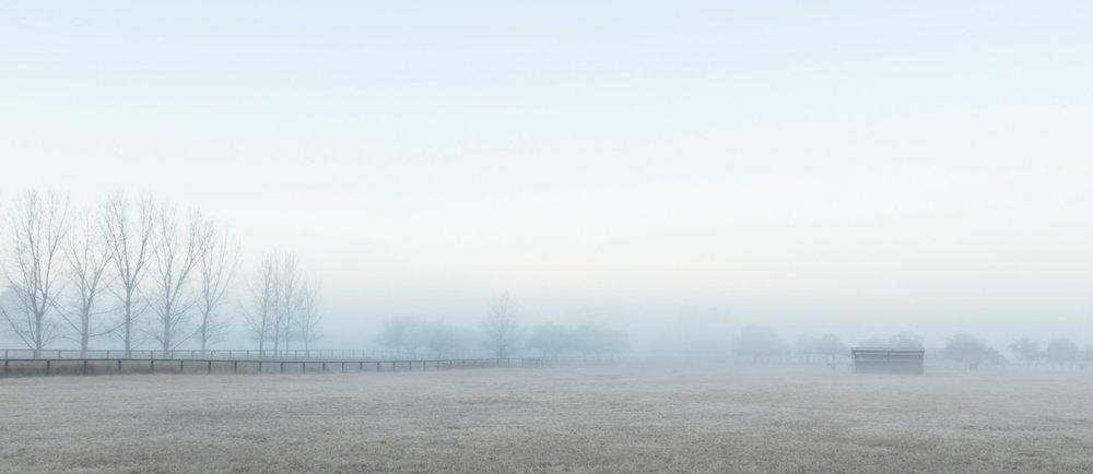 HELEN TRENERRY Photographer - Landscape - Richmond Paddock