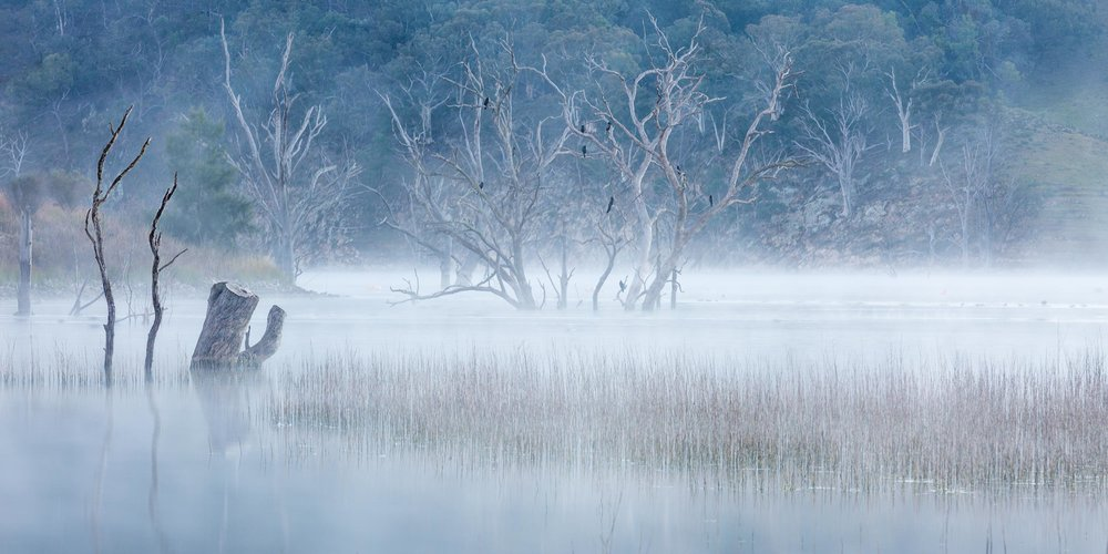 HELEN TRENERRY Photographer - Landscape - Lake Windamere Mist