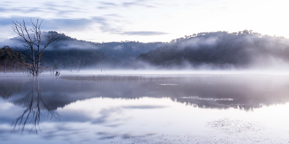 HELEN TRENERRY Photographer - Landscape - Rolling Fog
