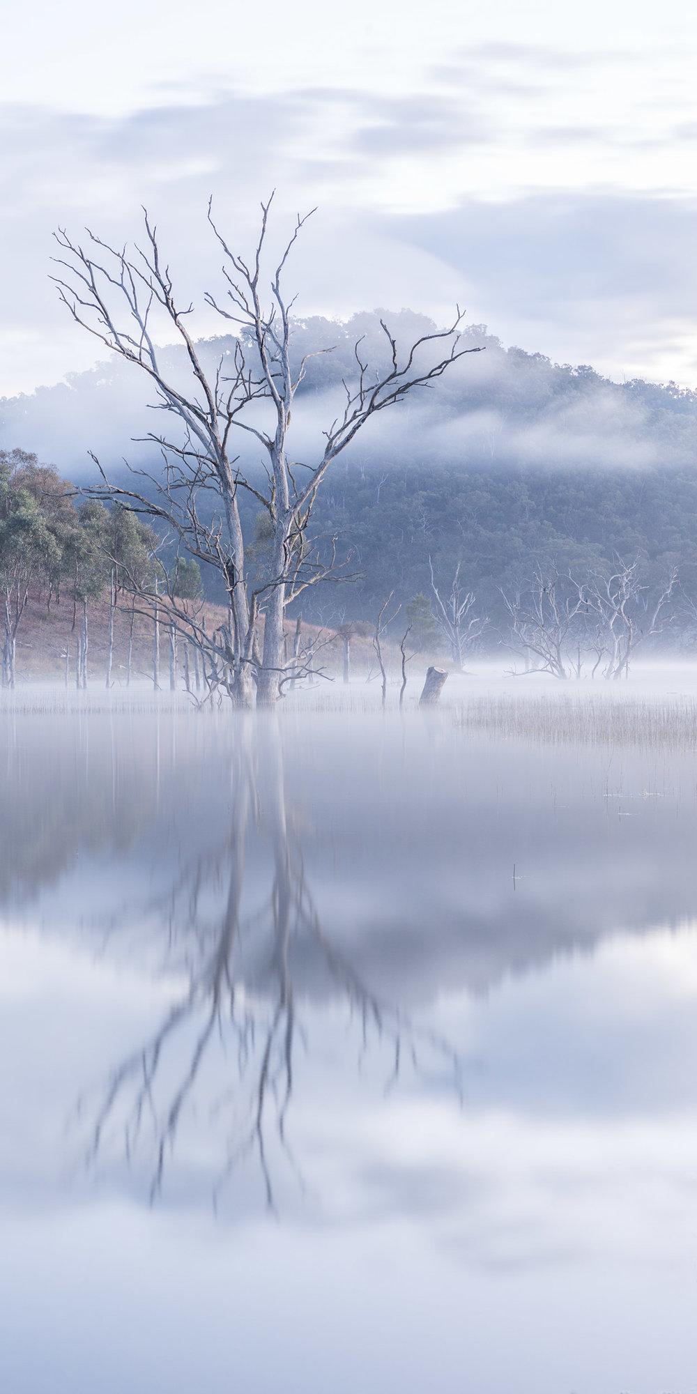 HELEN TRENERRY Photographer - Landscape - Windamere Morning Mist