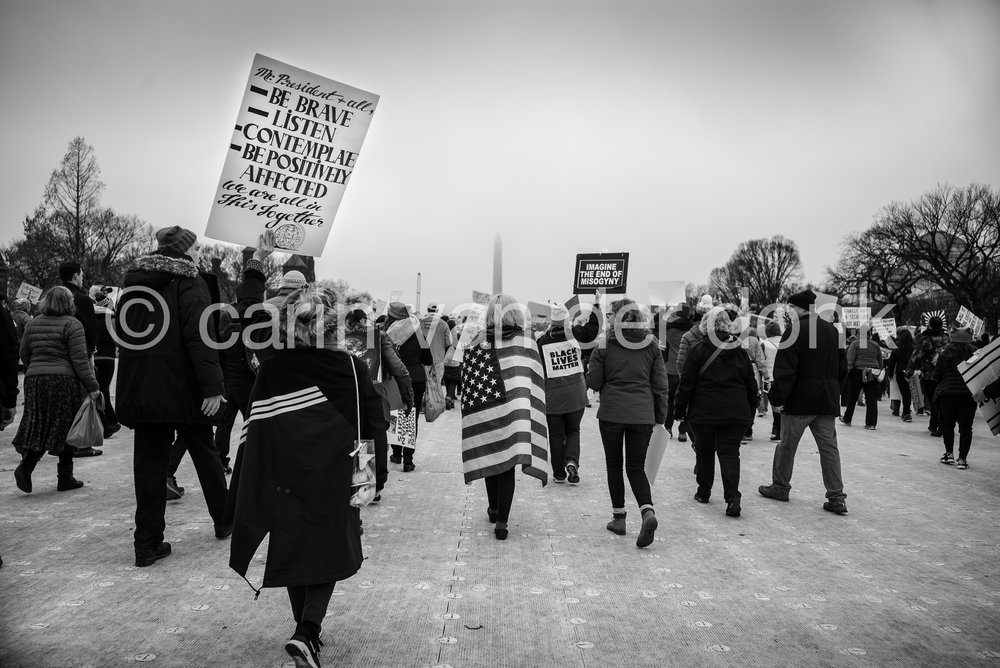 "Womens March, January 21st, 2017 DC 8"" x 12"" by Carin van der Donk"