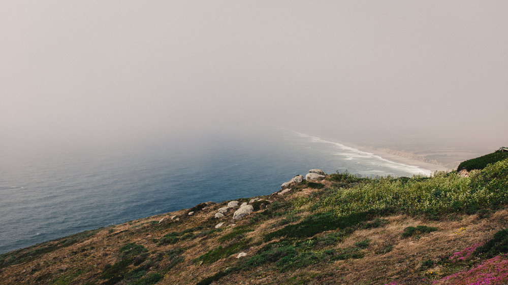 Point Reyes III by Andrew Ryan Shepherd