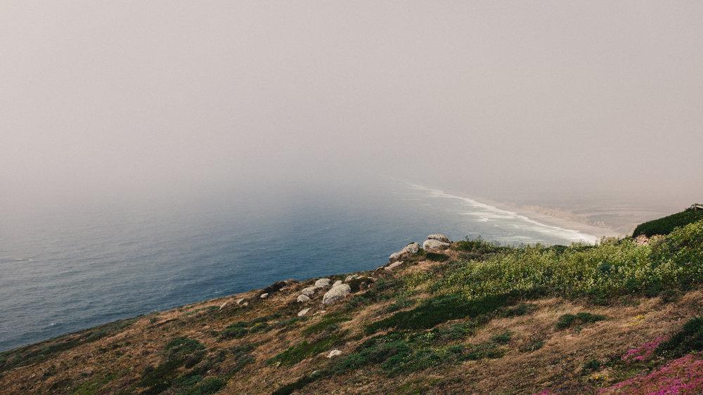 Point Reyes III by Andrew Ryan Shepherd