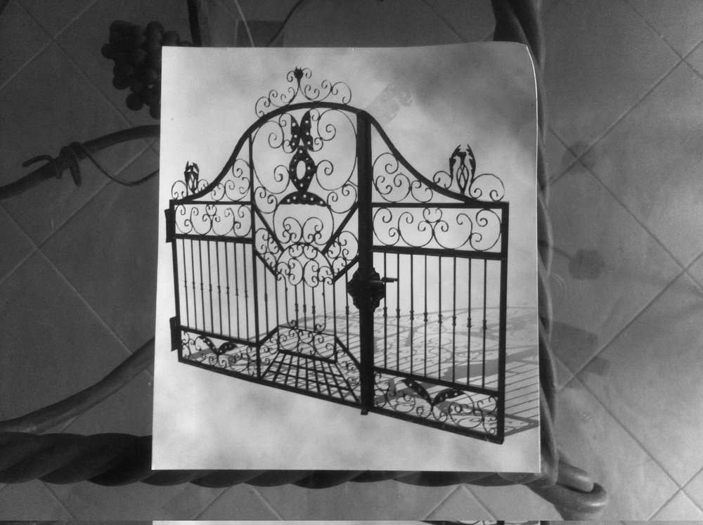 kapija kovano gvozdje - wrought iron gate