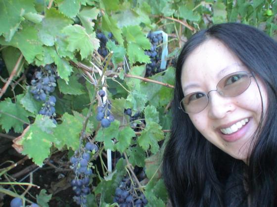 Geraldine with grape vine