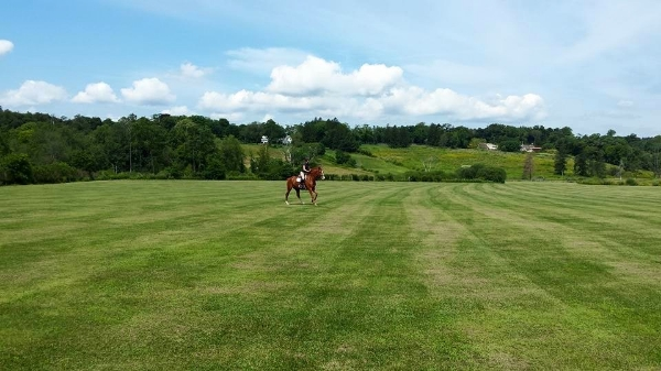Manicured field to gallop your horse plus miles of county side trails!