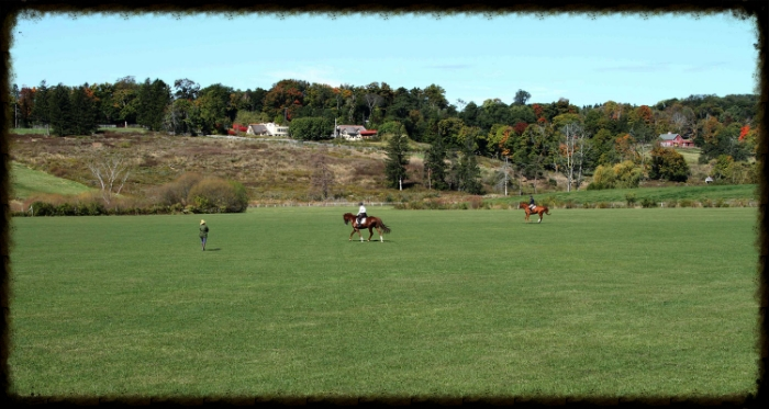 Lessons on the Field at Kirby Hill Farm