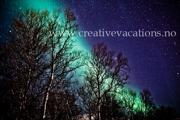 creative_vacations_4..jpg