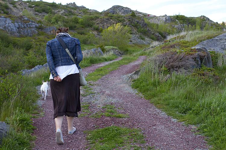 walk home sm.jpg