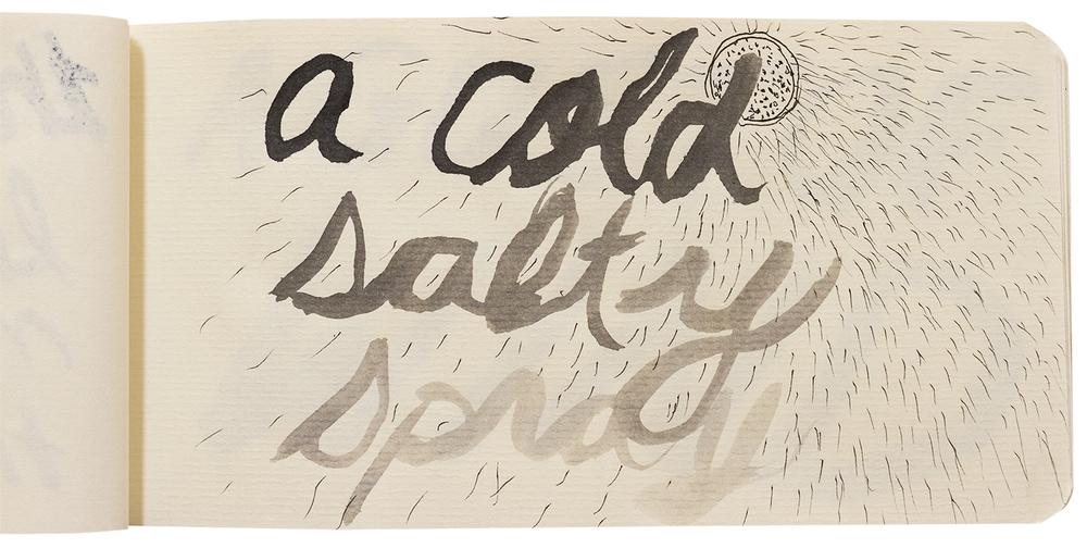 web Cold Salty Spray.jpg