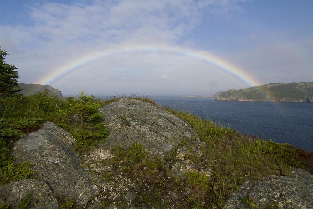 web rainbow landfall.jpg