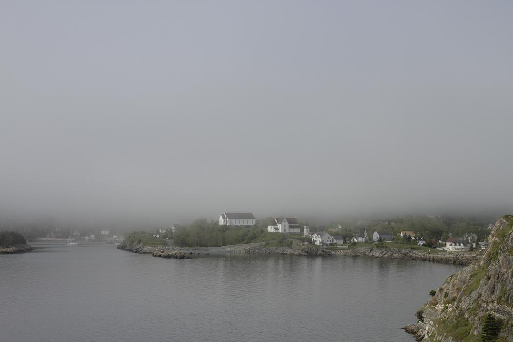 web foggy bay.jpg