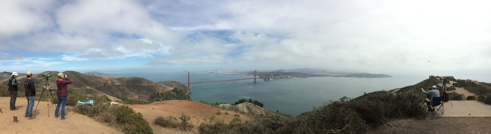 The view from Hawk Hill