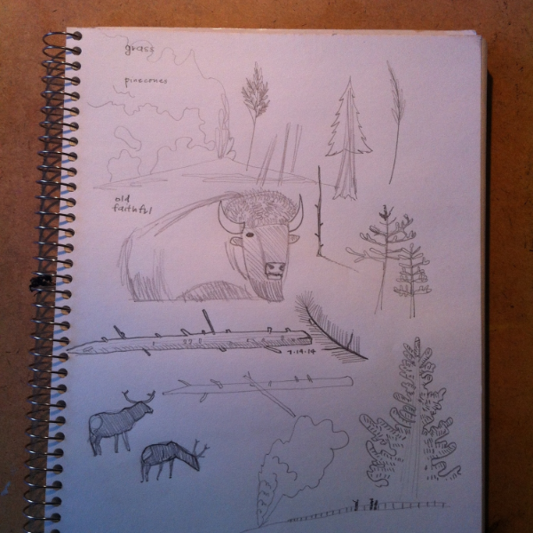 more yellowstone and wildlife sketches