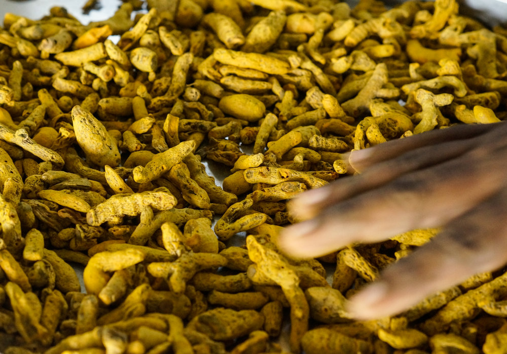GOlden_Turmeric