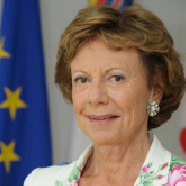 Neelie Kroes Vice President of European Commission