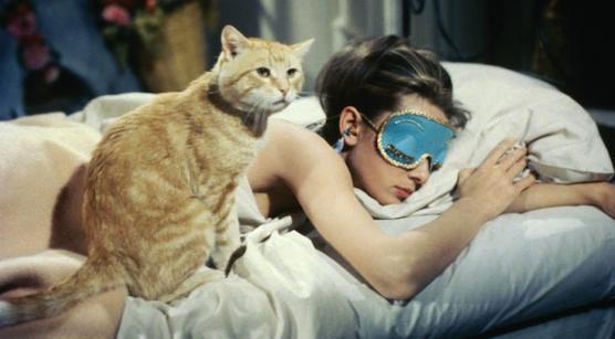 14. Cat.jpg